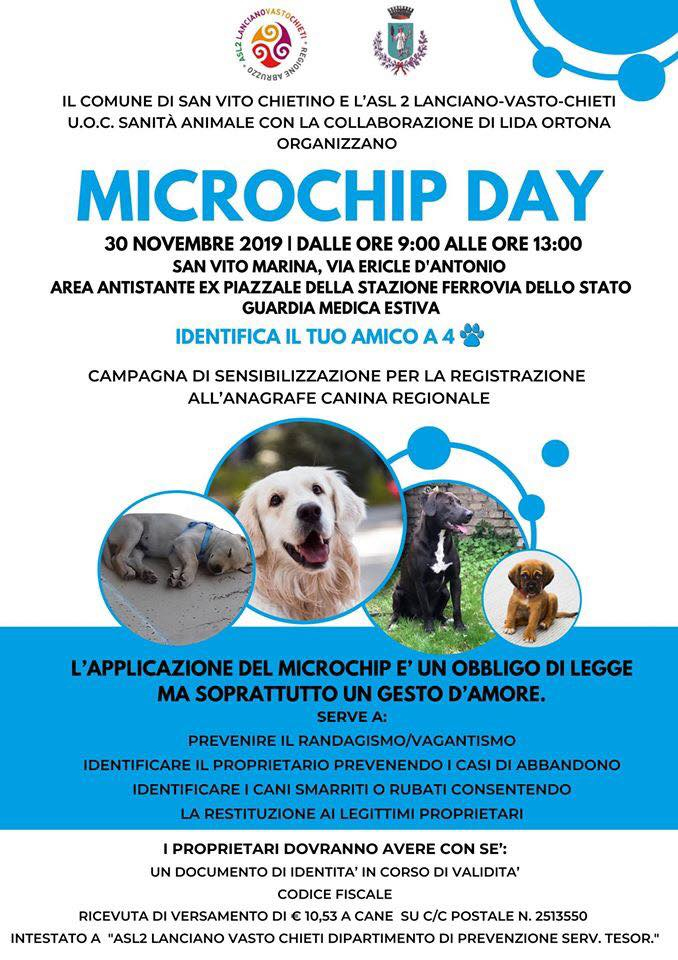 microchip day.jpg